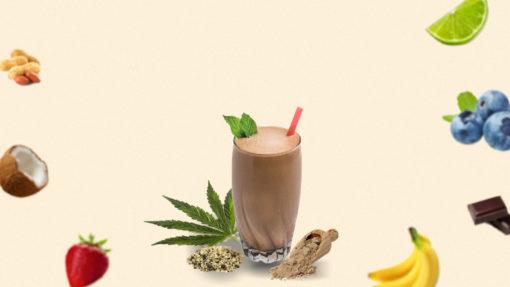 vegovego hemp seed protein powder flavors