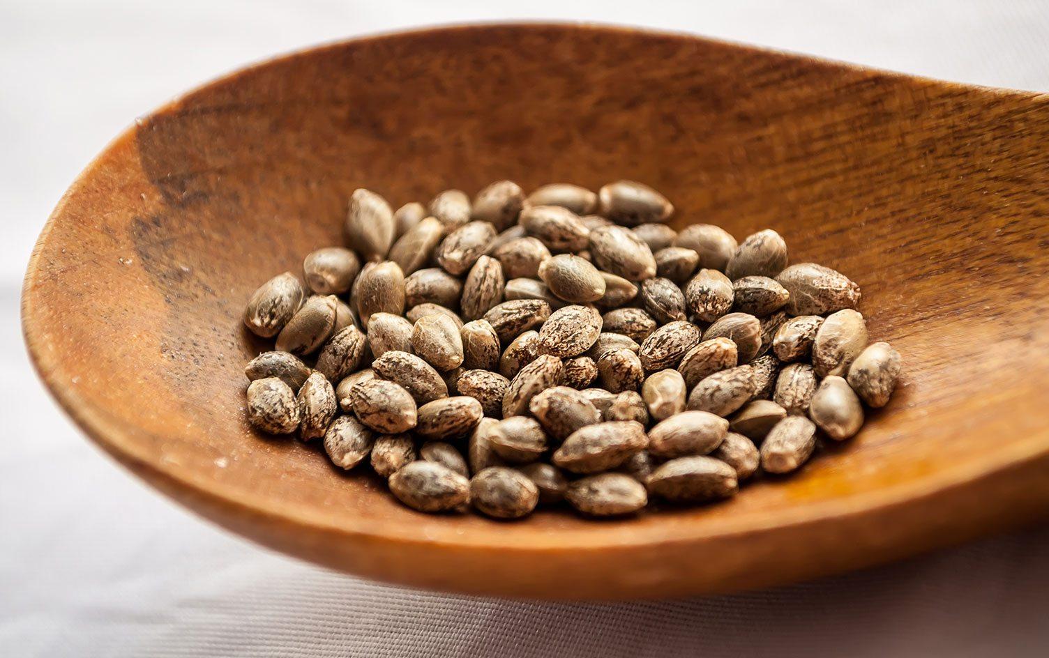 Конопляное семя лечение чтобы тест не показал коноплю